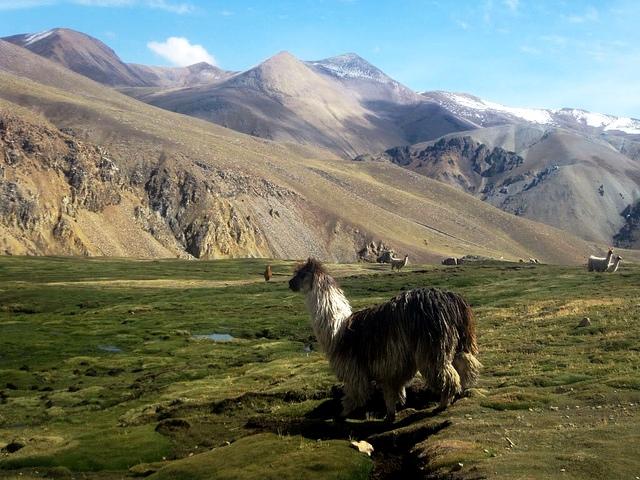 Merveilles d'Amérique du Sud : Cañón de cotahuasi (Peru)