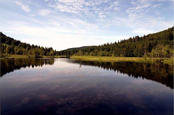 Lac du Lispach (Vosges) France